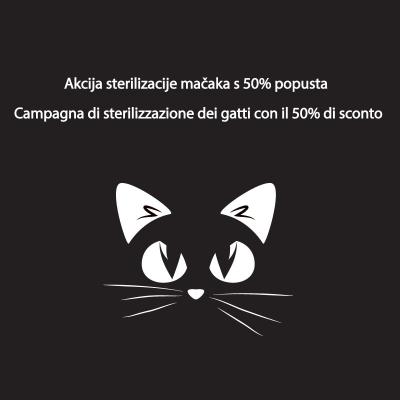Sterilizacija mačaka po akcijskim cijenama